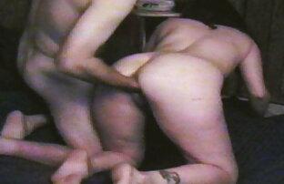 Cougar Cougar Koko, teman lama sedang hamster jepang xxx bercengkerama.
